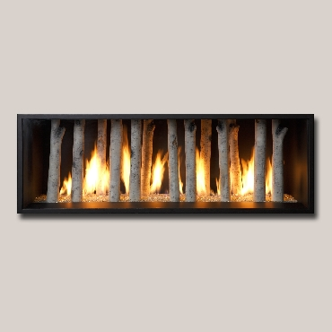 Xtreme By Fireplace Xtrordinair Georgetown Fireplace And