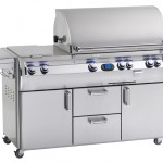 Fire Magic Echelon Diamond Series E790s Stainless Gas Grill at Georgetown Fireplace and Patio