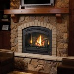 FPX 864 High Output Direct Vent Gas Fireplace with Charcoal Artisan Face